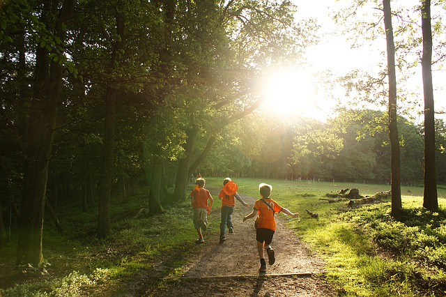probioticos mejora defensas niños