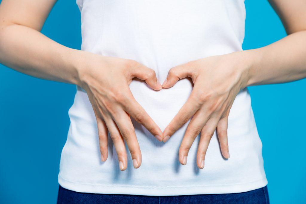 diferencias de los probioticos y prebioticos
