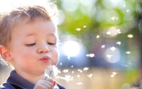 flora intestinal infantil