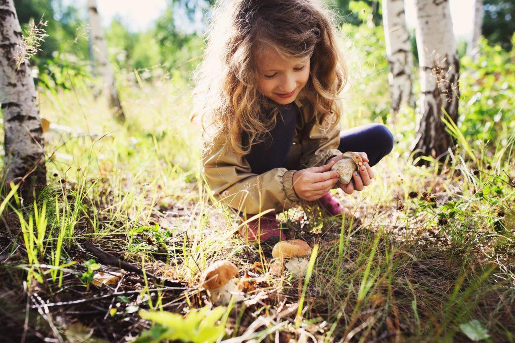 hipotesis de la higiene en ninos