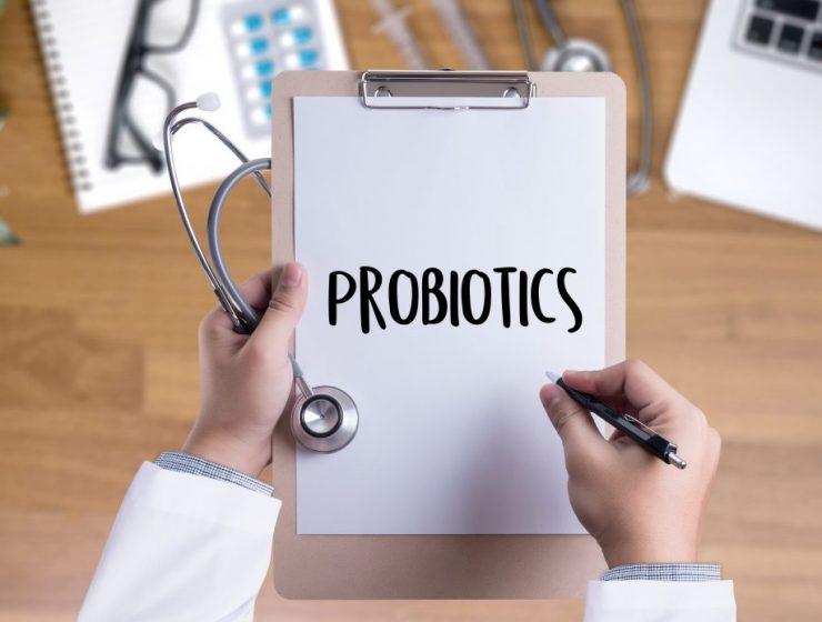 toda la informacion de probioticos